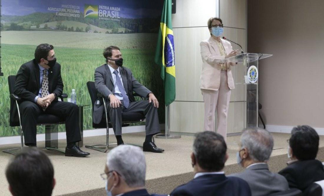 Ministério da Agricultura; Pecuária e Abastecimento